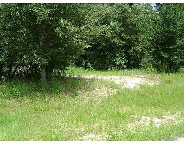 SE 127th Street, Lot 11, Belleview FL 34420