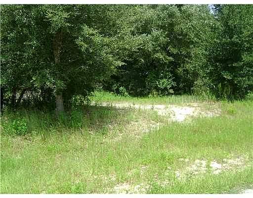 Real Estate for Sale, ListingId: 27375866, Belleview,FL34420