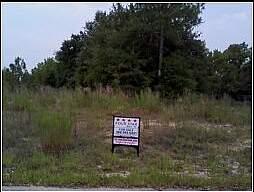 Real Estate for Sale, ListingId: 27375863, Belleview,FL34420